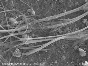 Bilde av asbest-typen krysotil avbildet i elektronmikroskop.