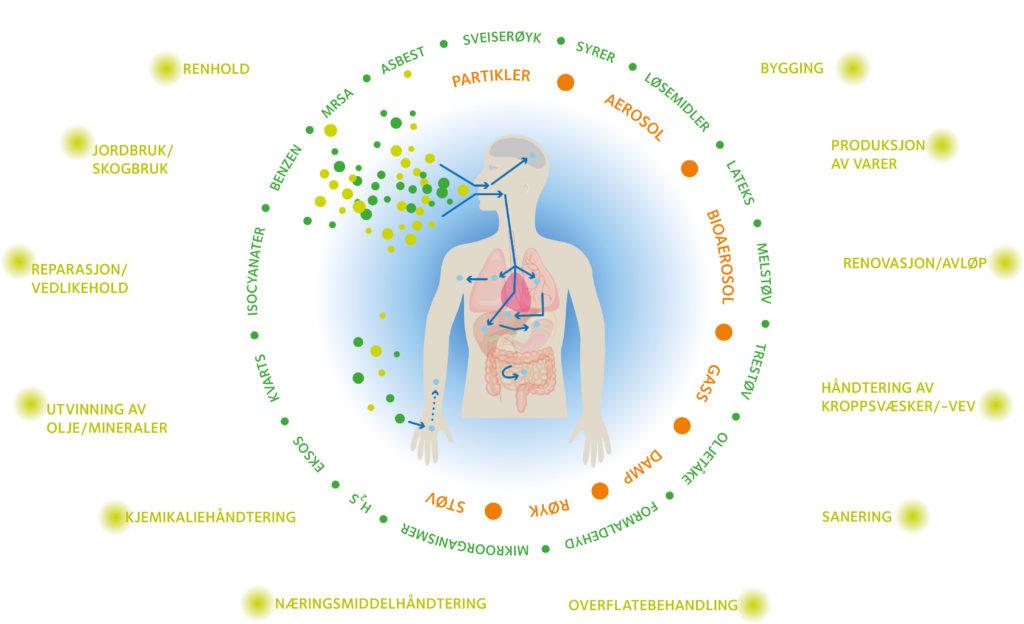 Illustrasjon av ulike kjemiske og biologiske eksponeringer.